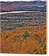 View From Mccauley Mountain Wood Print