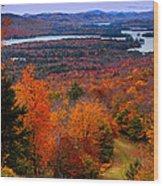 View From Mccauley Mountain II Wood Print