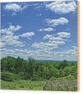 View From Monticello Wood Print