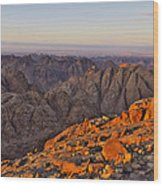 View From Mount Sinai Wood Print