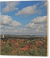 View From Mt Auburn Cemetery Tower Wood Print