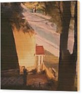 View From My Window On A Summer Afternoon  B-3 Wood Print
