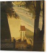 View From My Window On A Summer Afternoon  B-4 Wood Print