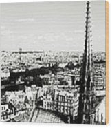 View From Notre Dame Wood Print
