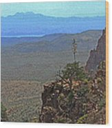 View From Parker Creek Canyon Wood Print