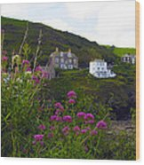 View From Port Isaac Wood Print