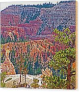 View From Queen's Garden Trail In Bryce Canyon National Park-utah Wood Print