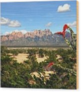 View From Roadrunner Wood Print