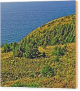View From Skyline Trail In Cape Breton Highlands Np-ns Wood Print