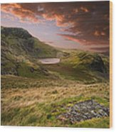 View From Snowdon Wood Print