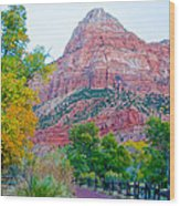 View From South Campground In Zion Np-ut Wood Print