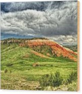 view from the Chief Joseph Highway  Wood Print