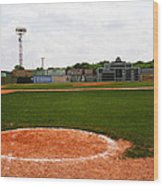 View From The Dugout Wood Print