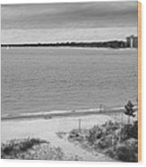 View From The Fort Gratiot Light House Wood Print