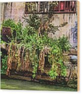 View From The Grand Canal China Wood Print