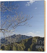 View From The Great Wall 842 Wood Print