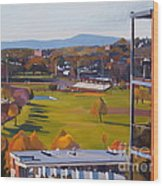 View From The Heights Wood Print