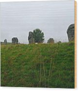 View From The Henge Wood Print