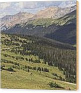 View From The Trail Ridge Road. Wood Print