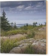 View From Top Of Cadilac Mountain In Acadia National Park Wood Print