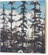 View From Twister Lift Wood Print