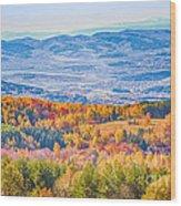 View From Vitosha Mountain Near Sofia City Wood Print