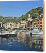view in Portofino Wood Print