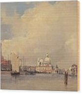 View In Venice Wood Print