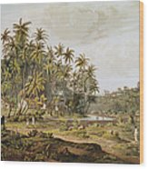 View Near Point Du Galle, Ceylon, Engraved By Daniel Havell 1785-1826 Published In 1809 Coloured Wood Print