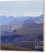 View Of Absaroka Mountains From Mount Washburn In Yellowstone National Park Wood Print
