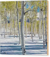 View Of Aspens In Fresh Winter Snow Wood Print