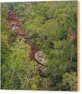 View Of Cano Cristales In Colombia Wood Print