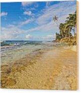 View Of Caribbean Coastline Wood Print