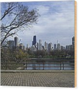 View Of Chicago Wood Print