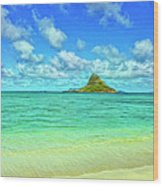 View Of Chinaman's Hat Wood Print