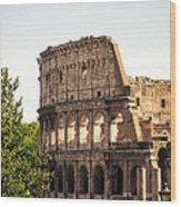 View Of Colosseum Wood Print