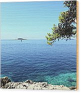 View Of Dubrovnik From Cavtat Peninsula Wood Print