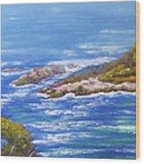 View Of Eden Australia Wood Print