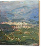 View Of Elbasan City Wood Print