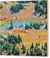 View Of Lake Wood Print