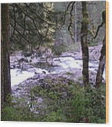 View Of Lucia Falls Wood Print
