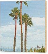 View Of Marina Wood Print