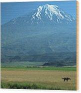 View Of Mount Ararat In Turkey Wood Print