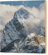 View Of Mount Sneffels And San Juan Wood Print