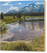 View Of Mount Tallac From Taylor Creek Beach Lake Tahoe Wood Print
