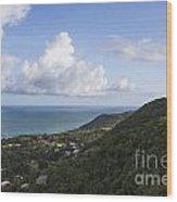 View Of Ocean And Punta Tuna In Puerto Rico Wood Print