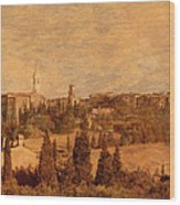 View Of Pienza And The Tuscan Landscape Wood Print