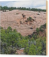 View Of Rock Dome Surface From Sandal Trail Across The Canyon In Navajo National Monument-arizona Wood Print