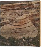 View Of The Canyon Wood Print