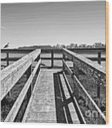 View Of The Elkhorn Slough From A Platform.  Wood Print